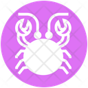 Crab Mud Crab Seafood Icon