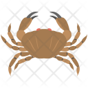 Cancer Crab Sign Icon