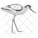 Crane Sandhill Crane Whooping Crane Icon