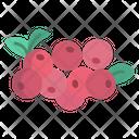 Crane Berry Fruit Food Icon