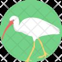 Crane Bird Icon