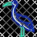 Crane Bird Flamingo Flightless Bird Icon