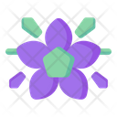 Cranesbill Flower Icon
