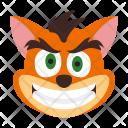 Crash bandicoot Icon