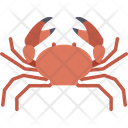 Crawfish Crawl Crab Crayfish Icon