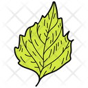 Crenate Leaf Leaf Foliage Icon