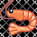 Crevette Pawn Crustacean Icon