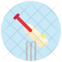 Cricket Ball Bet Icon