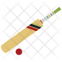 Cricket Bat Ball Icon