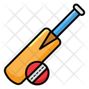 Cricket Bat And Ball Cricket Game Icon