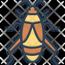 Cricket Bug Creepy Icon