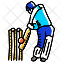 Sport Cricket Playing Cricket Icon