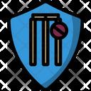Cricket Badge Icon