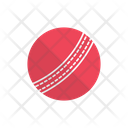 Hardball Cricket Sport Icon