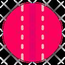 Cricket Ball Ball Cricket Icon