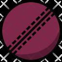 Cricket Ball Cricket Ball Icon