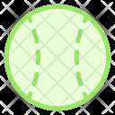 Ball Baseball Cricketball Icon