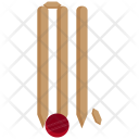 Cricket Stumps Icon