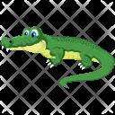 Crocodile Coyote Animal Icon