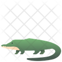 Crocodile Animal Creature Icon