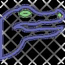 Crocodile Icon