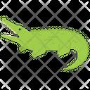 Crocodile Aligator Wildlife Icon