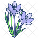 Crocus Flower Blossom Icon