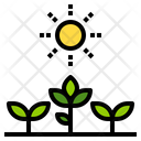 Crops Farm Farming Icon