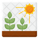 Crops Agriculture Farming Icon