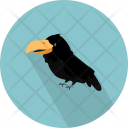 Crow Aves Bird Icon