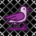 Crow Halloween Crow Black Bird Icon