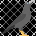 Standing Crow Black Icon