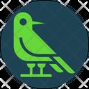 Halloween Bird Crow Icon