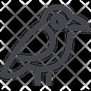 Crow Bird Nature Icon