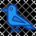 Crow Bird Halloween Horror Scary Icon