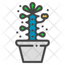 Crown of thorns cactus Icon