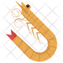 Crustacean Shrimp Seafood Animal Icon