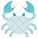 Biology Crustacean Crab Icon
