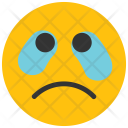 Crying Emoji Smiley Icon