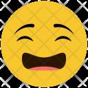 Confused Sad Expression Icon