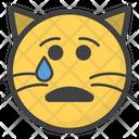 Crying Cat Icon