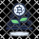 Crypto Plant Bitcoin Plant Bitcoin Icon