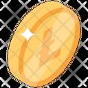 Litecoin Digital Money Bitcoin Technology Icon