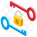 Cryptography Key Icon