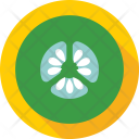 Cucumber Vegetable Zucchini Icon