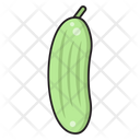 Cucumber Vegetable Salad Icon