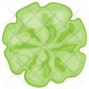 Cucumber Flower Design Icon