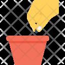 Cultivate Icon