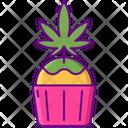 Cupcake Cupa Cake Dessert Icon