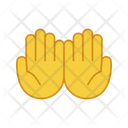 Cupped Hands Icon